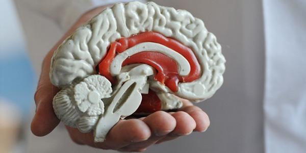 بیماری های مغزی