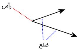 رأس و ضلع زاویه چیست