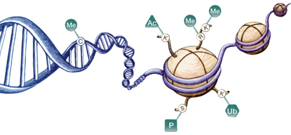 تغییرات ژنومی