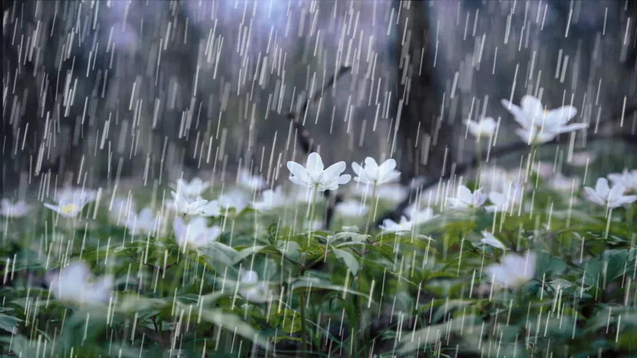 باران مصنوعی — روش تولید | علمی و به زبان ساده