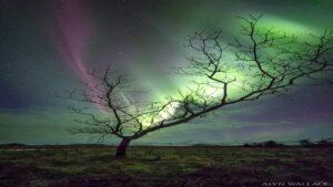 شفق قطبی در ایسلند — تصویر نجومی