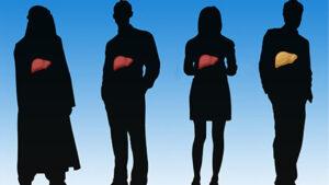 گریدهای کبد چرب | انواع، علائم، خطرات و درمان