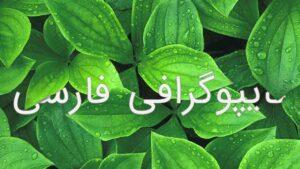 آموزش تایپوگرافی فارسی در فتوشاپ | به زبان ساده (+ فیلم آموزش گام به گام)