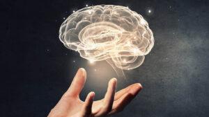 نوروساینس چیست؟ | علوم اعصاب و علوم اعصاب شناختی — آنچه باید بدانید