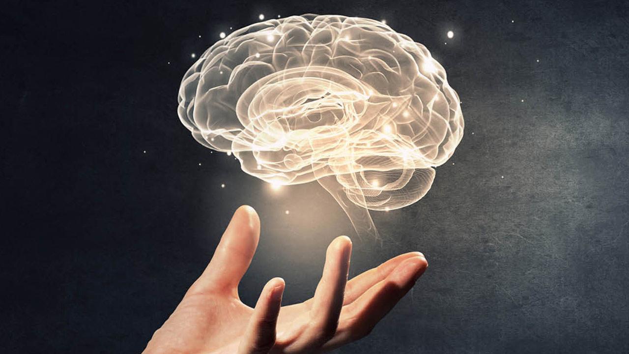 نوروساینس چیست؟   علوم اعصاب و علوم اعصاب شناختی — آنچه باید بدانید