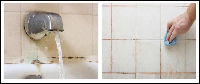 کپک حمام