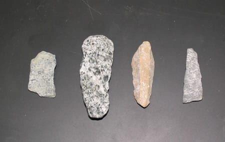 سنگدانه پهن، دراز و پهن دراز