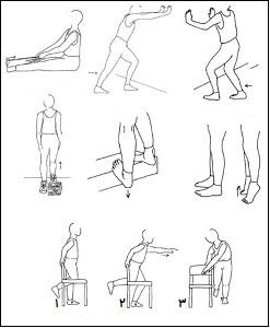 ورزش برای تاندون