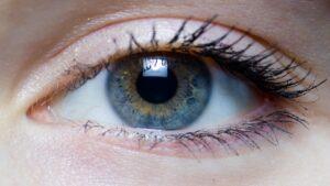 چشم انسان | ساختار، ساختمان و آناتومی — به زبان ساده