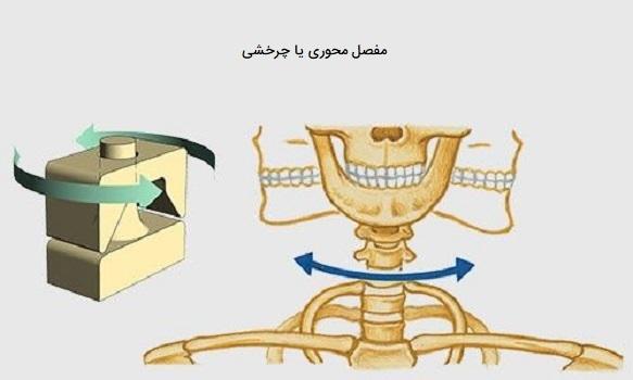 مفصل محوری یا چرخشی