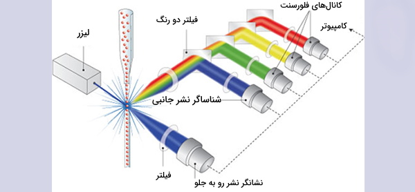 سیگنال نوری فلوسایتومتری