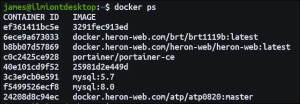 تصویر خروجی دستور docker ps -a که فهرستی از Containerهای در حال اجرا و متوقف شده را نشان میدهد | داکر چیست یا Docker چیست ؟