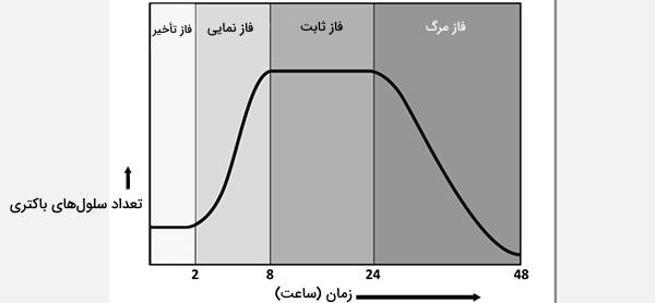 منحنی رشد باکتری