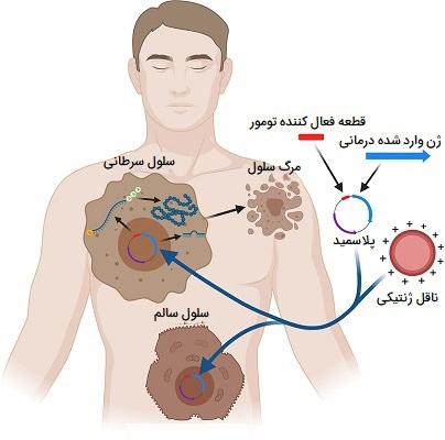 نوترکیبی و درمان سرطان