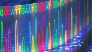 ژنتیک مولکولی چیست ؟ + معرفی منابع یادگیری — به زبان ساده