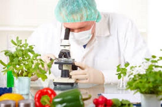 نوترکیبی در کشاورزی و غذا