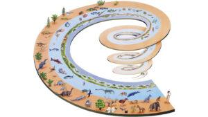 طبقه بندی جانداران چیست و بر چه اساسی انجام می شود؟ — به زبان ساده