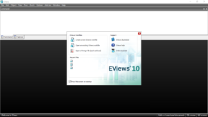 نرم افزار ایویوز چیست و چه کاربردی دارد؟ + معرفی بهترین منابع یادگیری Eviews