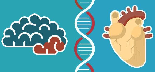 ژنتیک و آلزایمر