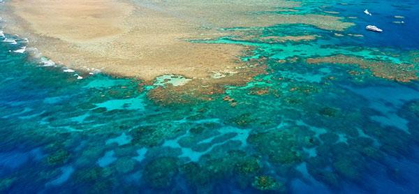 جزایر مرجانی