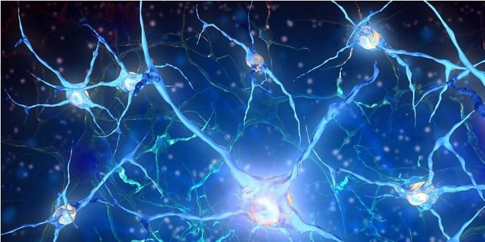بیوفیزیک سیستم های عصبی