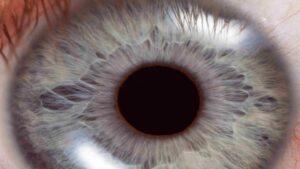 مردمک چشم چیست و چکاری انجام می دهد؟ — به زبان ساده